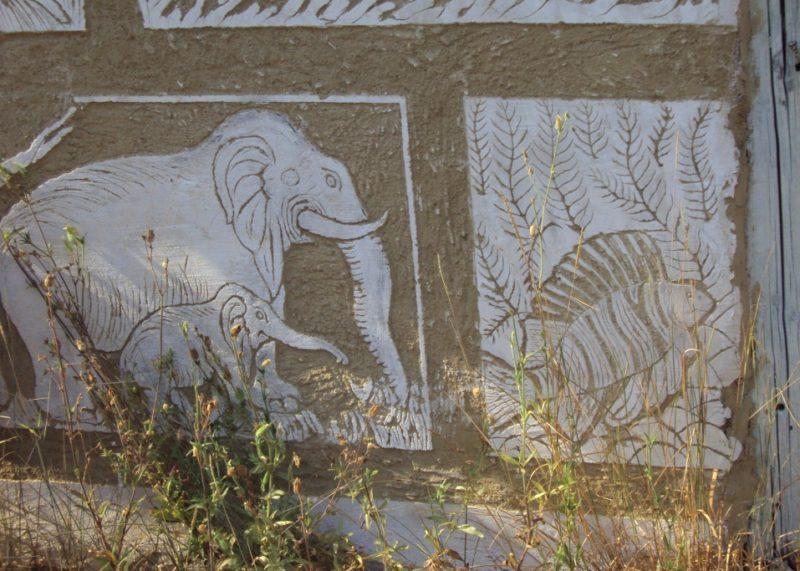 Sloni honí rybu. Foto Josef Mlejnek jr.